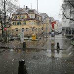 Das Schneetreiben